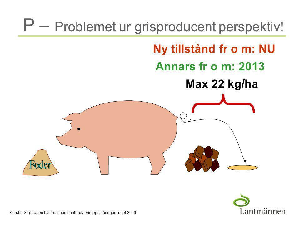 2006-03-30 Company/Dept, Author - 4 - P-problemet grisproducent P – Problemet ur grisproducent perspektiv.