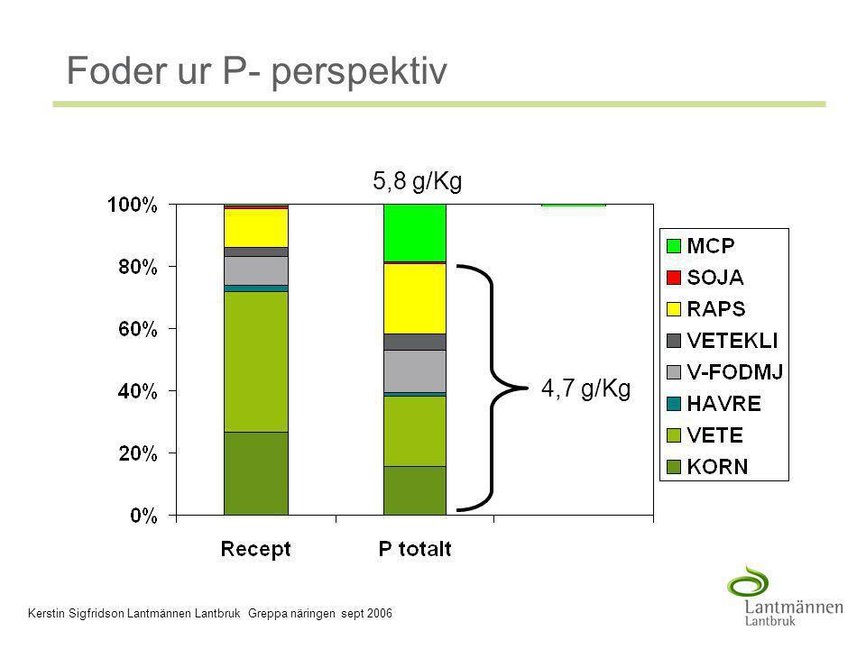 2006-03-30 Company/Dept, Author - 6 - Foder ur P- perspektiv 5,8 g/Kg 4,7 g/Kg Kerstin Sigfridson Lantmännen Lantbruk Greppa näringen sept 2006