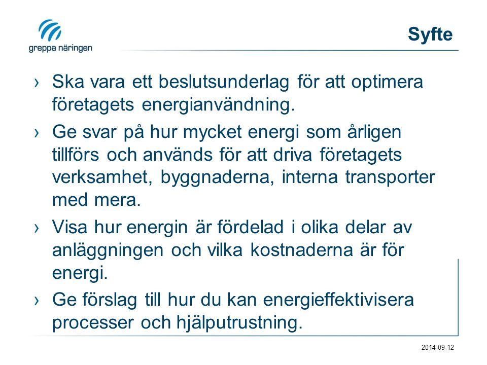 Syfte ›Ska vara ett beslutsunderlag för att optimera företagets energianvändning.