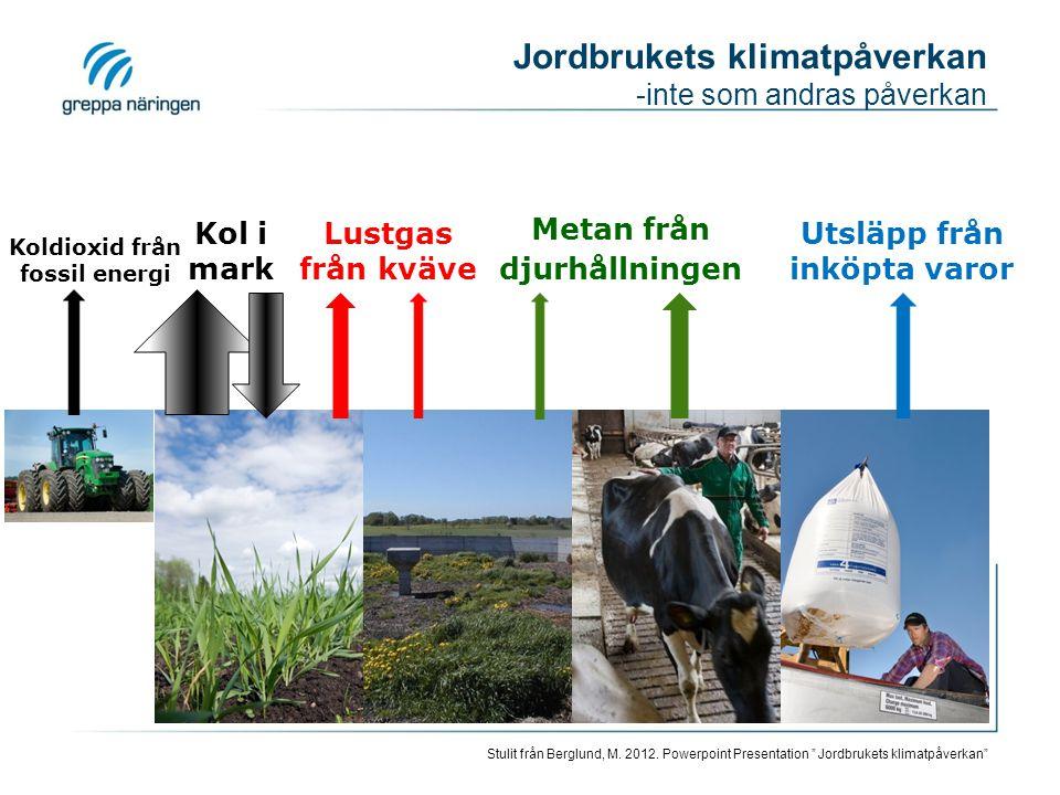 Jordbrukets klimatpåverkan -inte som andras påverkan Metan från djurhållningen Lustgas från kväve Kol i mark Koldioxid från fossil energi Utsläpp från inköpta varor Stulit från Berglund, M.