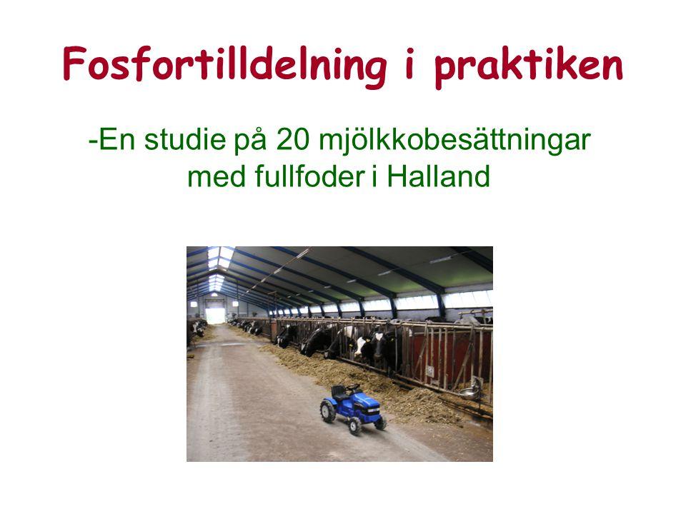 Fosfortilldelning i praktiken -En studie på 20 mjölkkobesättningar med fullfoder i Halland