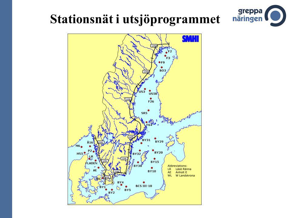 Stationsnät i utsjöprogrammet