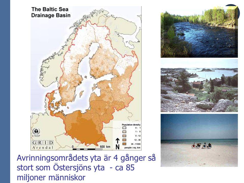 Tillförselvägarna för kväve och fosfor till Östersjön N (ton/år)P (ton/år) Flodmynningar830 00041 000 Punktkällor vid kusten100 00013 000 Nedfall300 0005 500 Biologisk fixering130 000 – 300 000 - 700 000 - Summa59 500