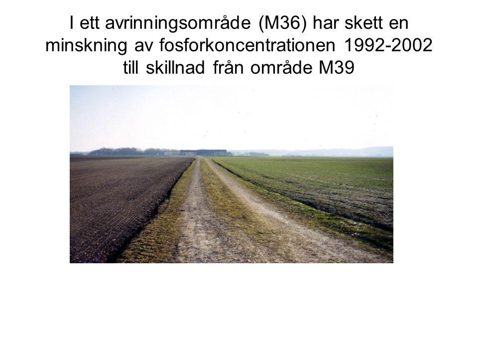 I ett avrinningsområde (M36) har skett en minskning av fosforkoncentrationen 1992-2002 till skillnad från område M39