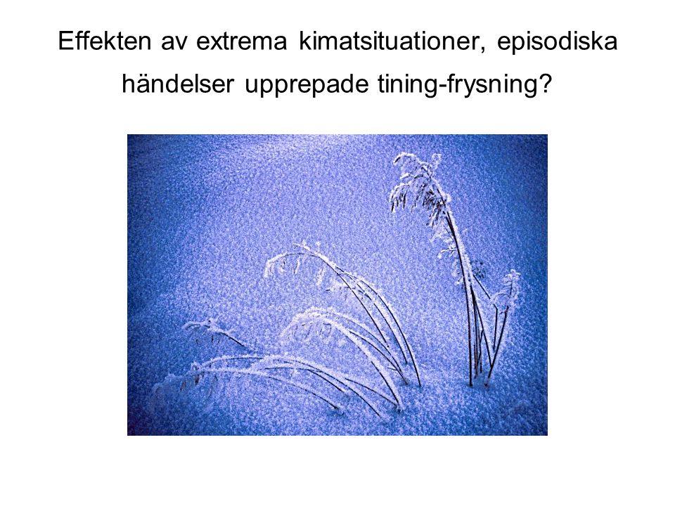 Effekten av extrema kimatsituationer, episodiska händelser upprepade tining-frysning