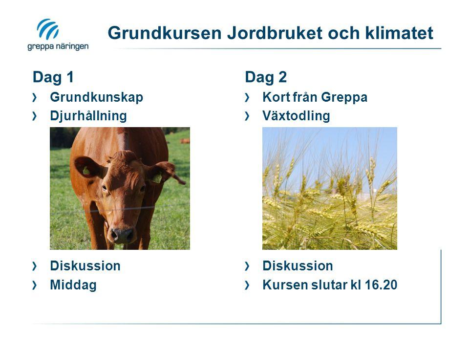 Praktiska detaljer Varmt välkommen.