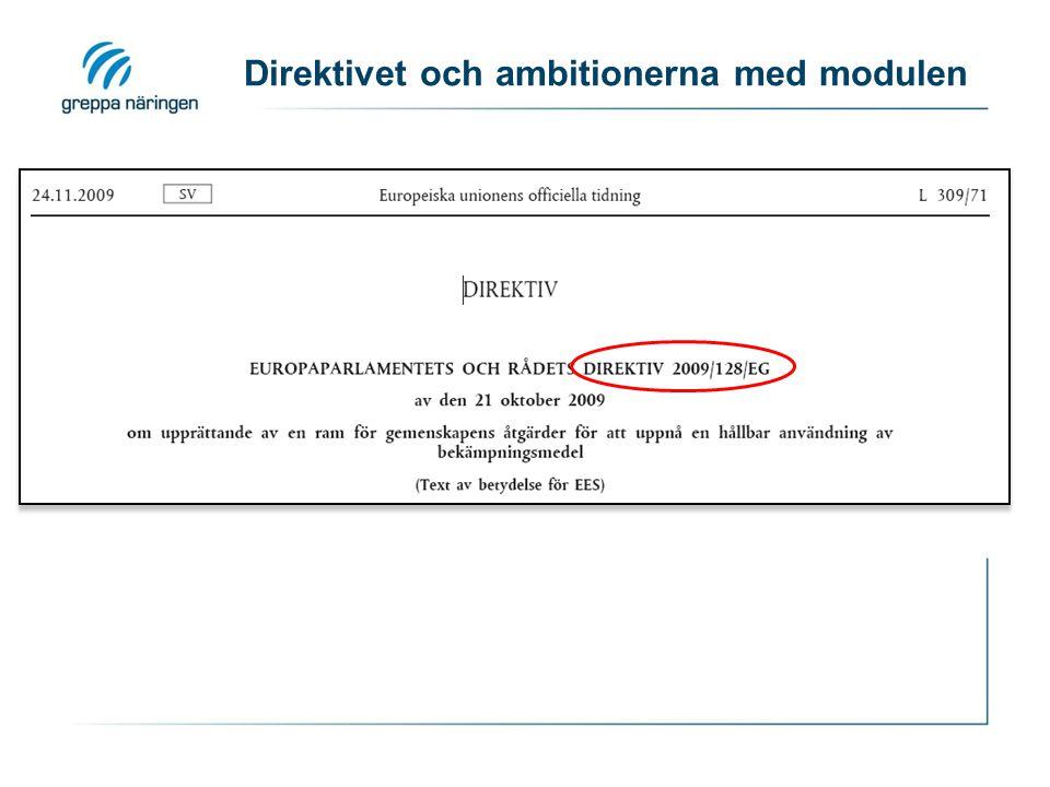 Direktivet och ambitionerna med modulen