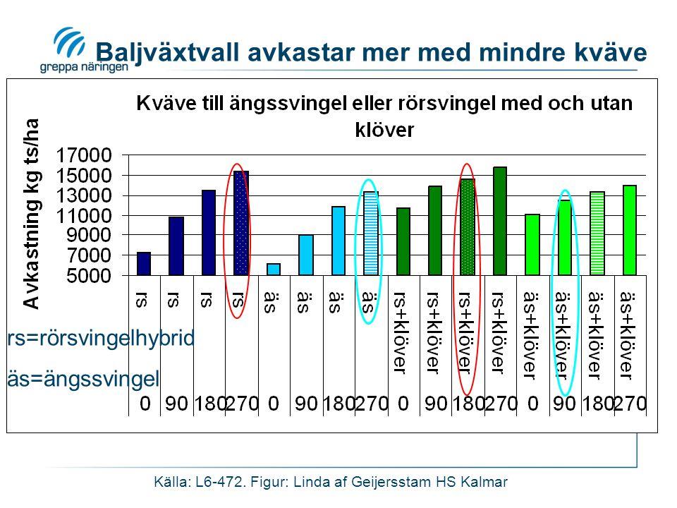 Källa: L6-472. Figur: Linda af Geijersstam HS Kalmar Baljväxtvall avkastar mer med mindre kväve rs=rörsvingelhybrid äs=ängssvingel