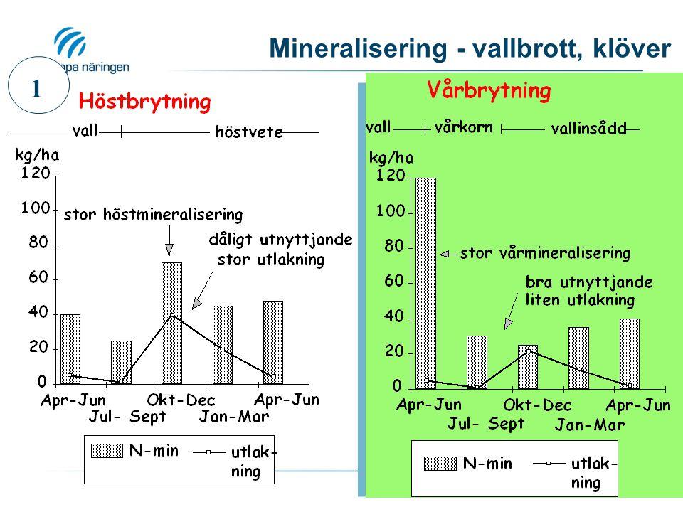 Mineralisering - vallbrott, klöver 1