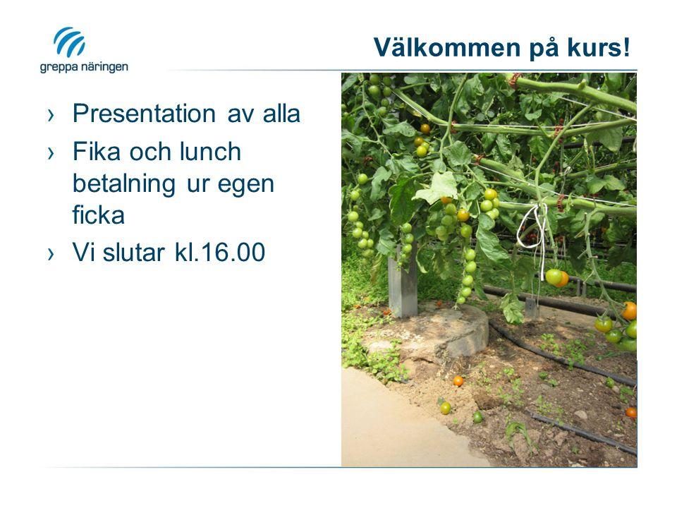 Välkommen på kurs! ›Presentation av alla ›Fika och lunch betalning ur egen ficka ›Vi slutar kl.16.00