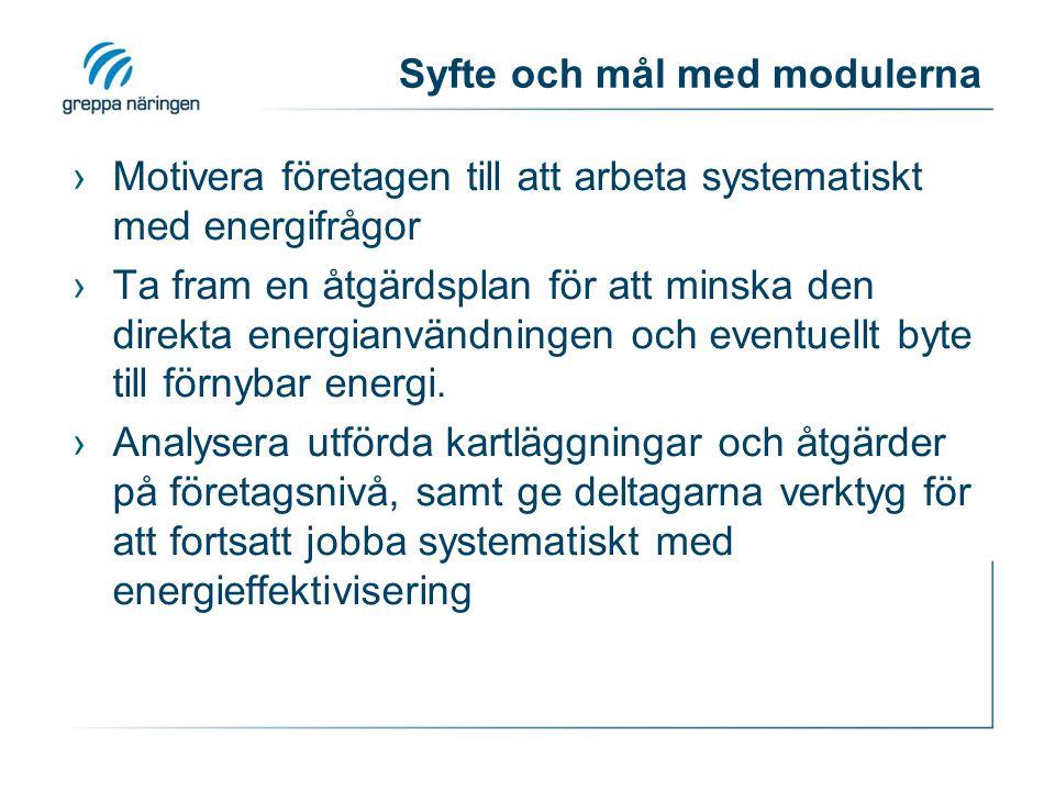 Syfte och mål med modulerna ›Motivera företagen till att arbeta systematiskt med energifrågor ›Ta fram en åtgärdsplan för att minska den direkta energ