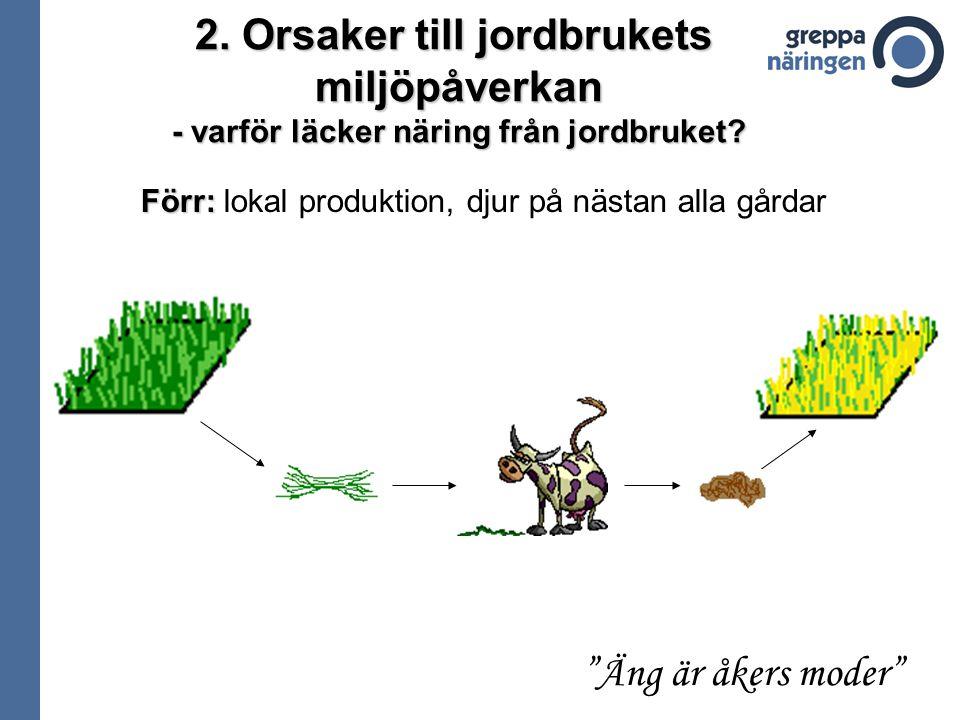"""Förr: Förr: lokal produktion, djur på nästan alla gårdar """"Äng är åkers moder"""" 2. Orsaker till jordbrukets miljöpåverkan - varför läcker näring från jo"""
