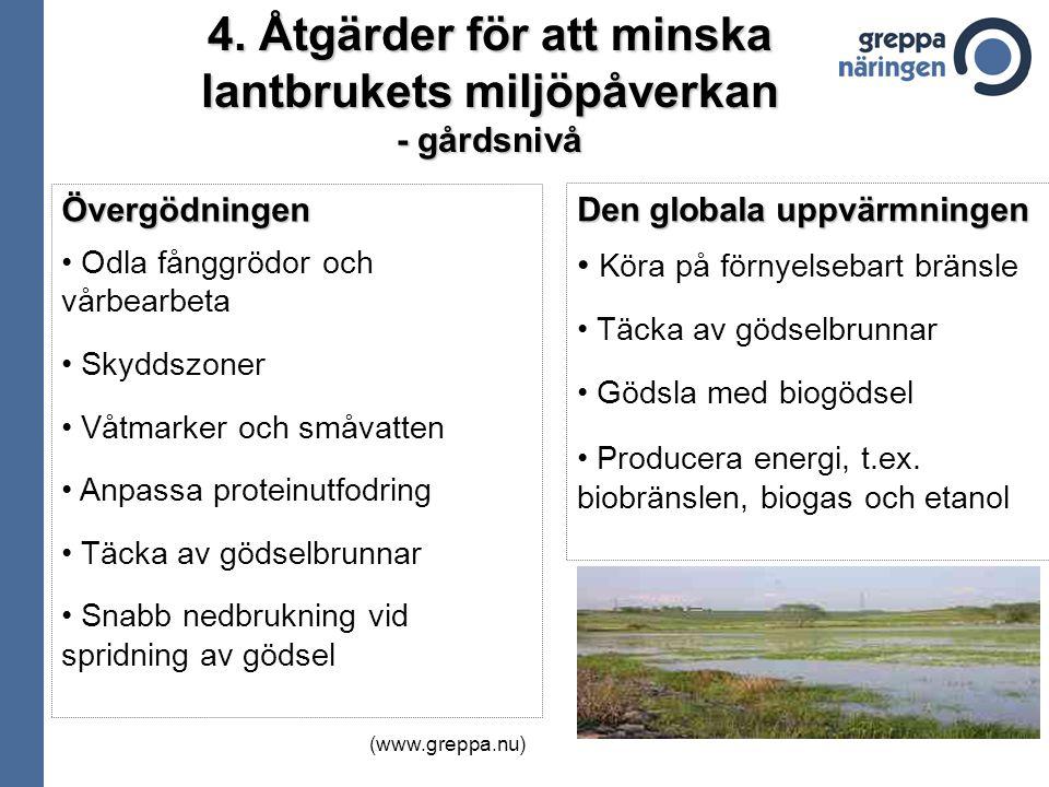 4. Åtgärder för att minska lantbrukets miljöpåverkan - gårdsnivå Övergödningen Odla fånggrödor och vårbearbeta Skyddszoner Våtmarker och småvatten Anp