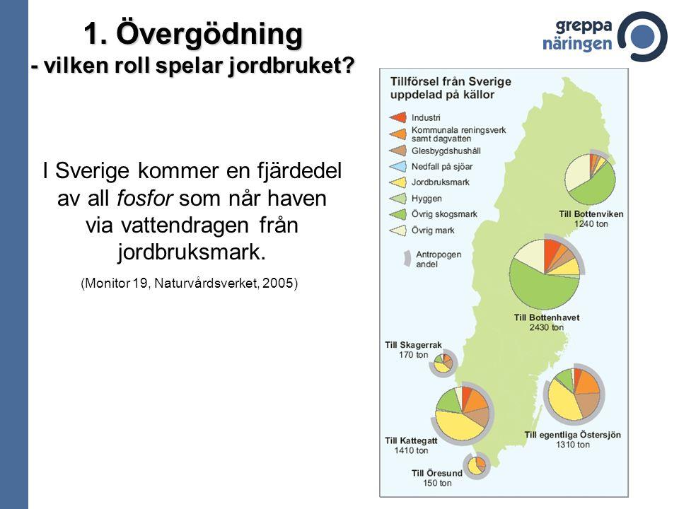 I Sverige kommer en fjärdedel av all fosfor som når haven via vattendragen från jordbruksmark. 1. Övergödning - vilken roll spelar jordbruket? (Monito