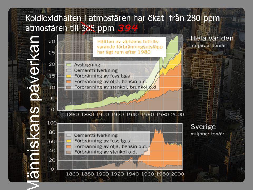 Människans påverkan Koldioxidhalten i atmosfären har ökat från 280 ppm atmosfären till 385 ppm 394