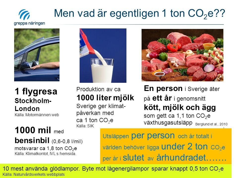 Men vad är egentligen 1 ton CO 2 e?? 1 flygresa Stockholm- London Källa: Motormännen web 1000 mil med bensinbil (0,6-0,8 l/mil) motsvarar ca 1,8 ton C