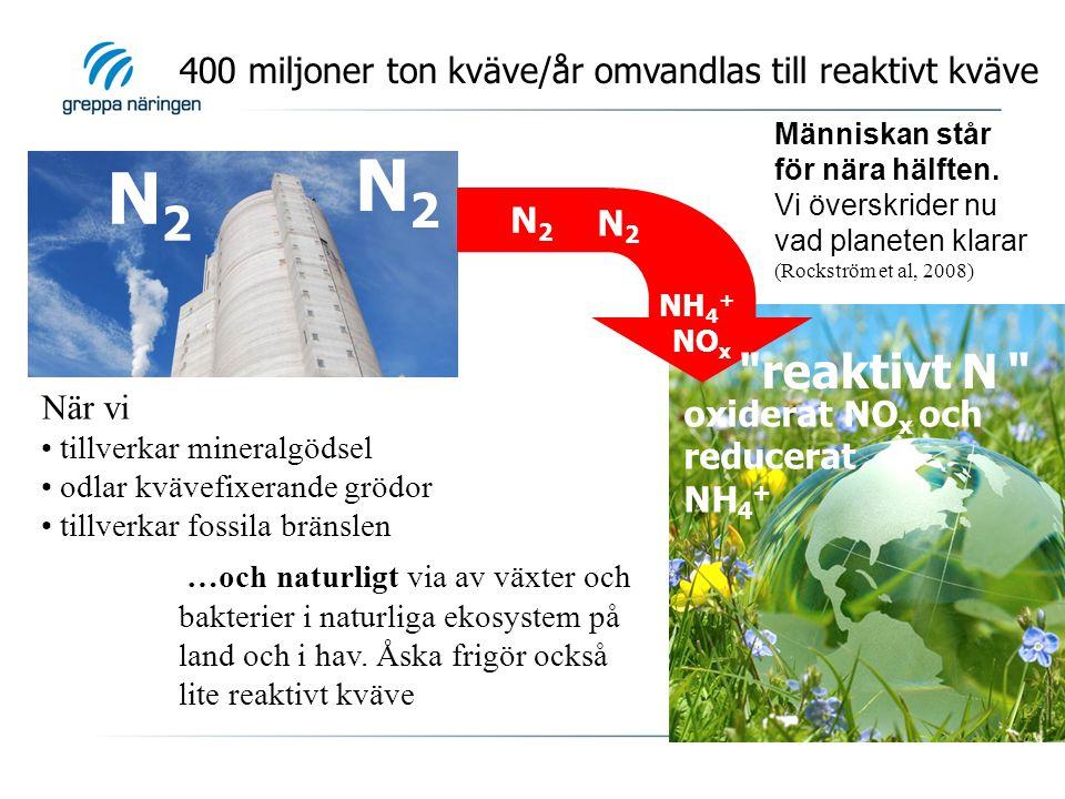 400 miljoner ton kväve/år omvandlas till reaktivt kväve