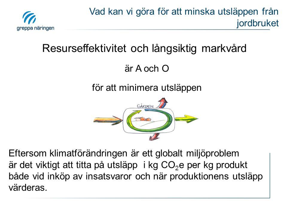 Eftersom klimatförändringen är ett globalt miljöproblem är det viktigt att titta på utsläpp i kg CO 2 e per kg produkt både vid inköp av insatsvaror o