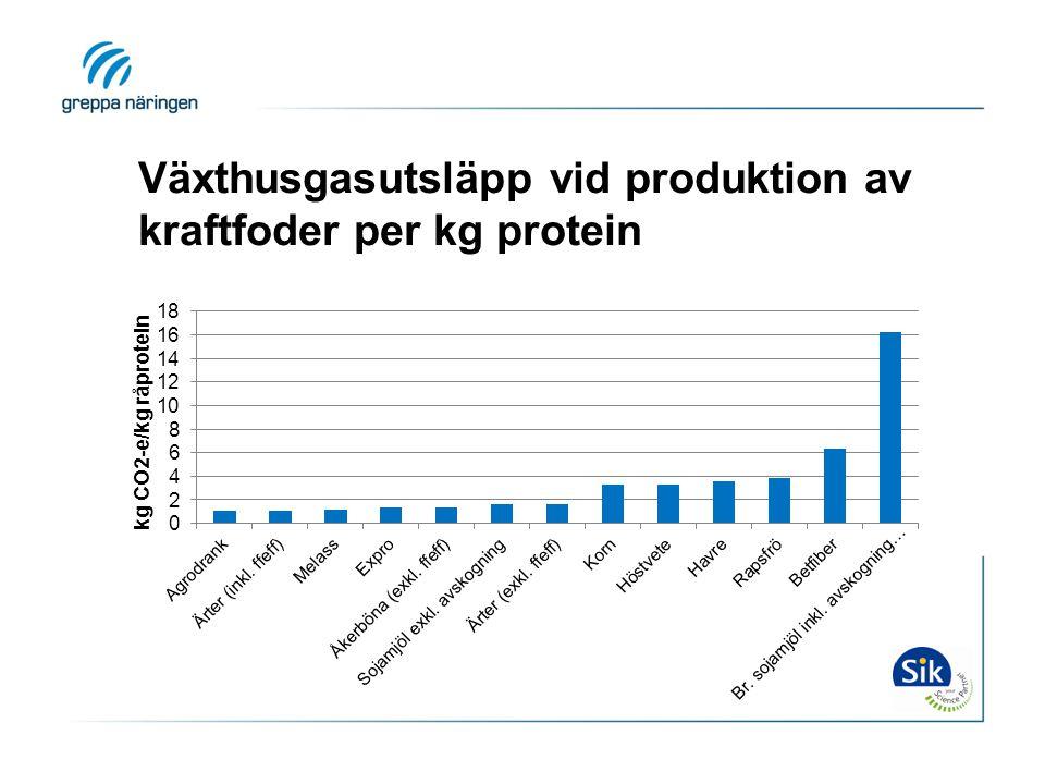 Växthusgasutsläpp vid produktion av kraftfoder per kg protein