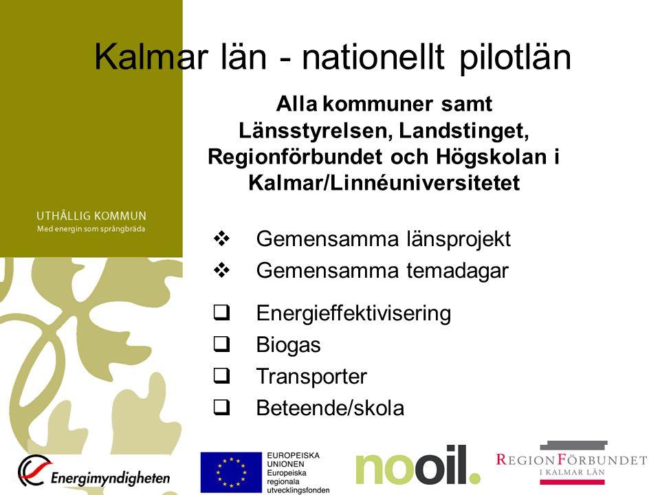 Uthållig kommun i Kalmar län Referensgrupp med kontaktpersoner från alla parter Referensgruppen röstar om årliga projekt och temadagar Styrgruppen beslutar EU:s Regionala fond medfinansierar arbetet