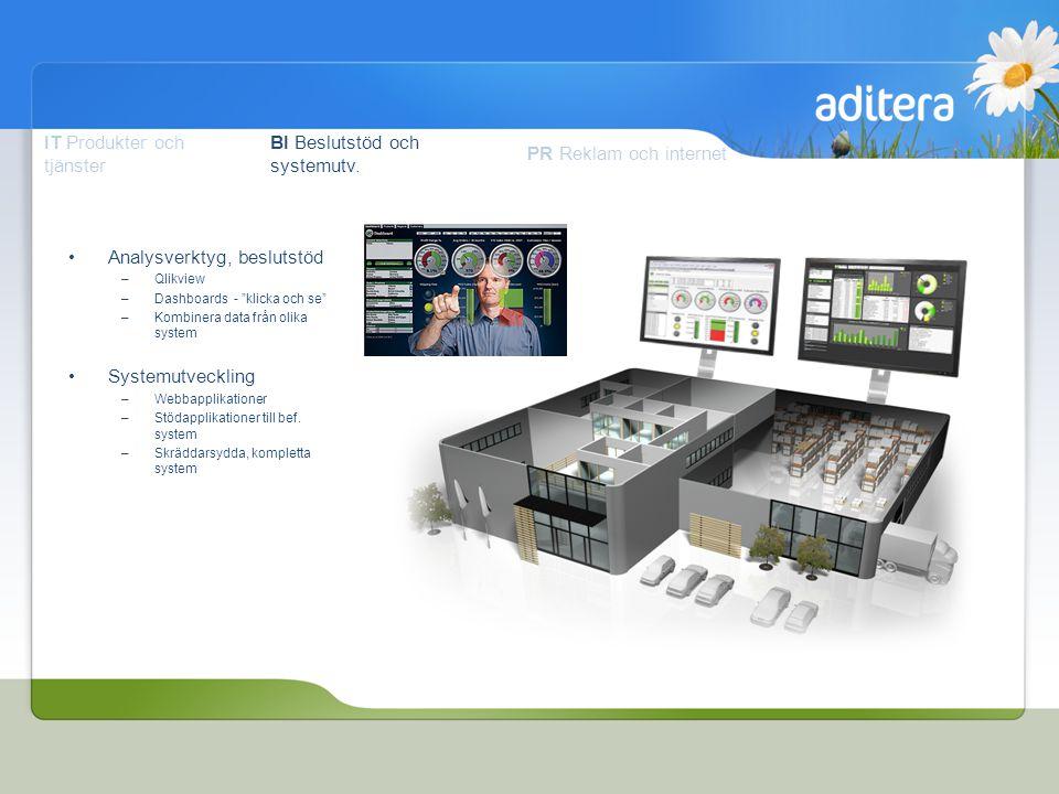 IT Produkter och tjänster BI Beslutstöd och systemutv.