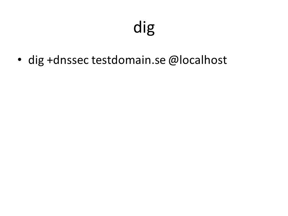 dig dig +dnssec testdomain.se @localhost