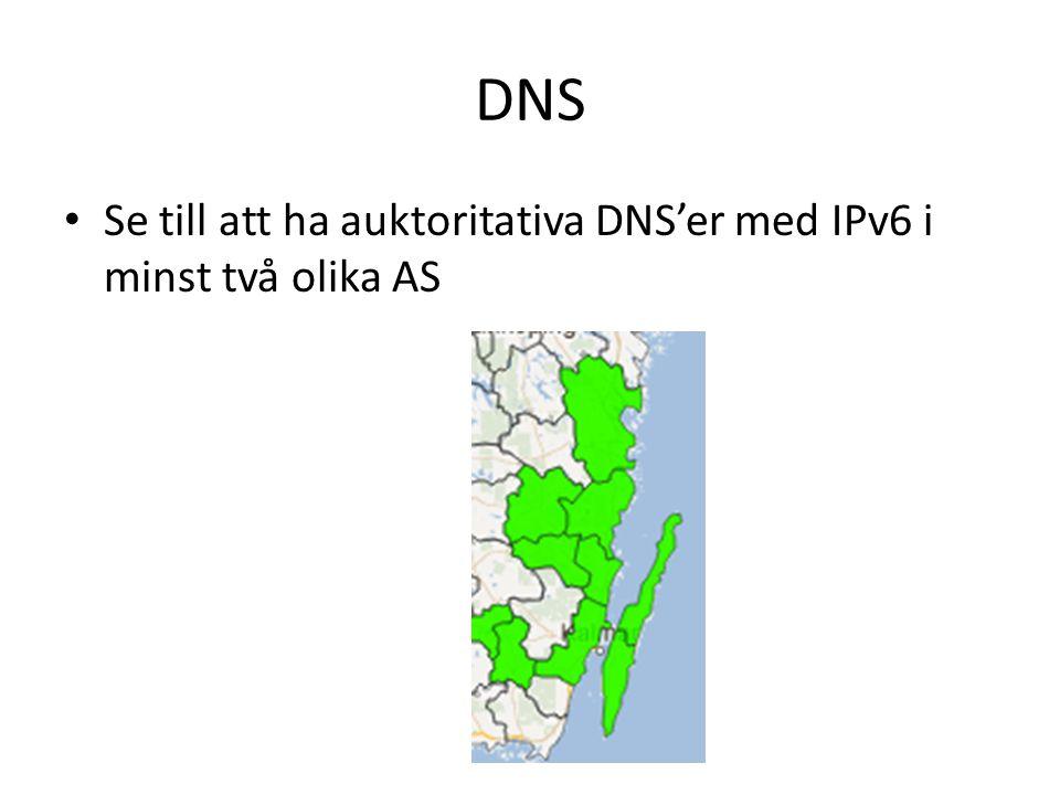 DNS Se till att ha auktoritativa DNS'er med IPv6 i minst två olika AS
