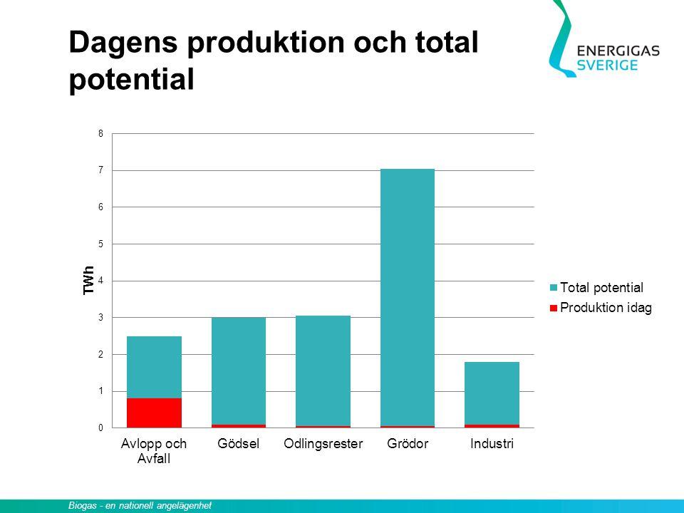 Biogas - en nationell angelägenhet Dagens produktion och total potential