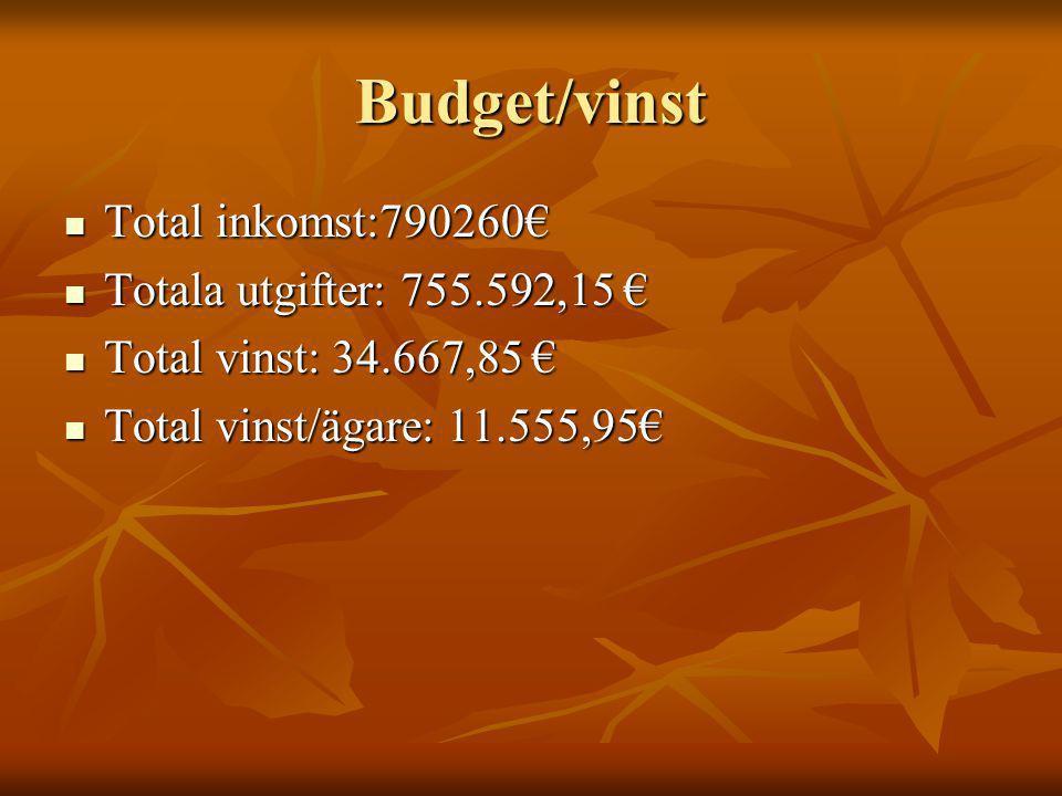 Budget/vinst Totala utgifter: 755.592,15 € Totala utgifter: 755.592,15 € Total vinst: 34.667,85 € Total vinst: 34.667,85 € Total vinst/ägare: 11.555,95€ Total vinst/ägare: 11.555,95€