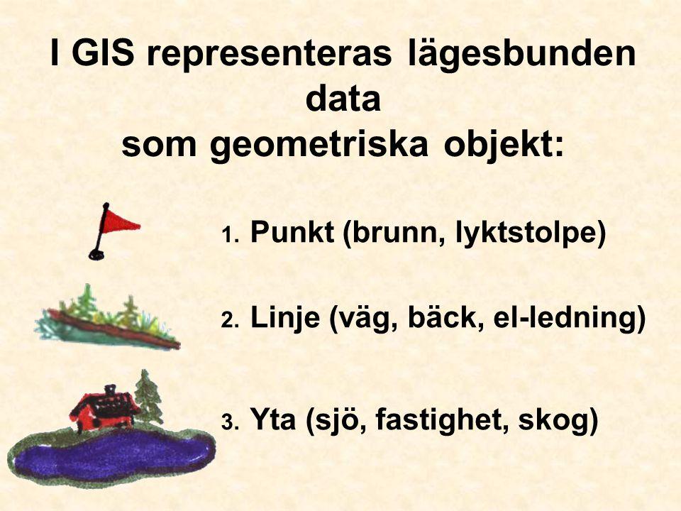 I GIS representeras lägesbunden data som geometriska objekt: 1. Punkt (brunn, lyktstolpe) 2. Linje (väg, bäck, el-ledning) 3. Yta (sjö, fastighet, sko