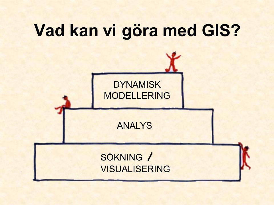 Vad kan vi göra med GIS? SÖKNING / VISUALISERING ANALYS DYNAMISK MODELLERING