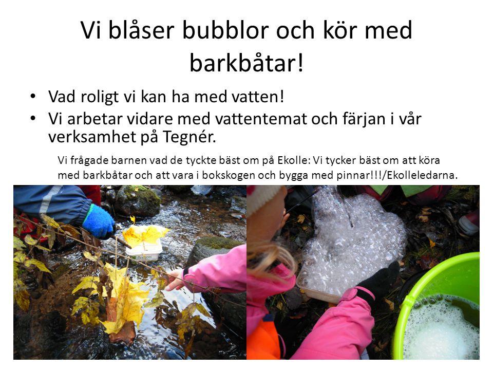 Vi blåser bubblor och kör med barkbåtar! Vad roligt vi kan ha med vatten! Vi arbetar vidare med vattentemat och färjan i vår verksamhet på Tegnér. Vi