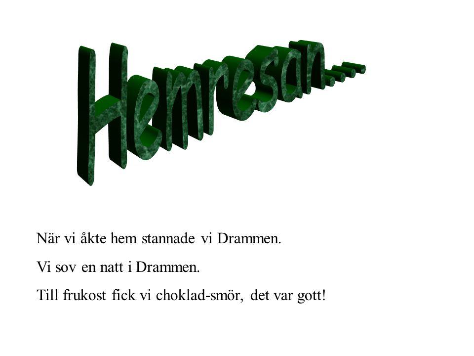 I Drammen bor det ca 52.000 invånare. Det tar knappt en timme att åka från Oslo till Dammen.