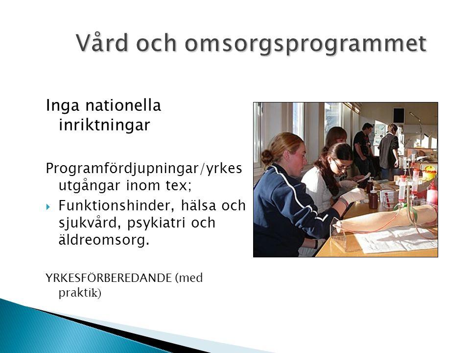 Inga nationella inriktningar Programfördjupningar/yrkes utgångar inom tex;  Funktionshinder, hälsa och sjukvård, psykiatri och äldreomsorg.