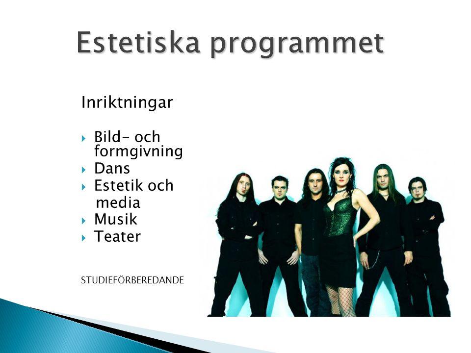 Inriktningar  Bild- och formgivning  Dans  Estetik och media  Musik  Teater STUDIEFÖRBEREDANDE