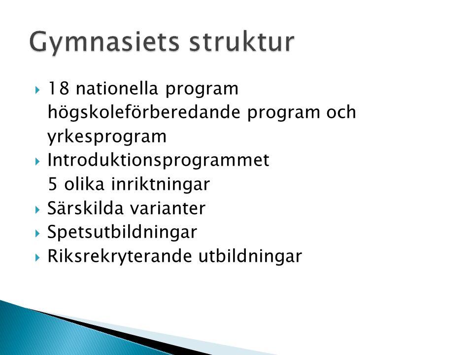  18 nationella program högskoleförberedande program och yrkesprogram  Introduktionsprogrammet 5 olika inriktningar  Särskilda varianter  Spetsutbildningar  Riksrekryterande utbildningar