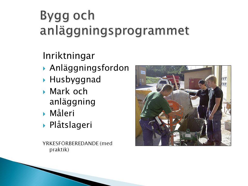 Inriktningar  Anläggningsfordon  Husbyggnad  Mark och anläggning  Måleri  Plåtslageri YRKESFÖRBEREDANDE (med praktik)
