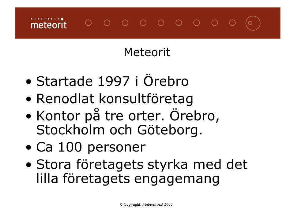 Meteorit Startade 1997 i Örebro Renodlat konsultföretag Kontor på tre orter. Örebro, Stockholm och Göteborg. Ca 100 personer Stora företagets styrka m