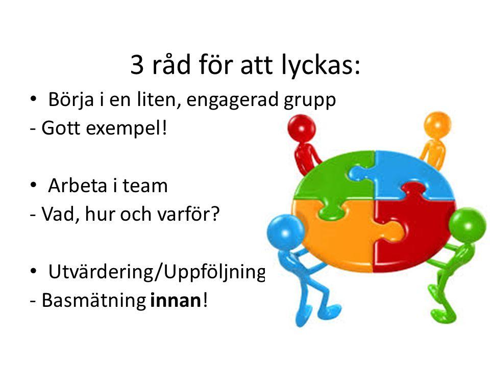 3 råd för att lyckas: Börja i en liten, engagerad grupp - Gott exempel! Arbeta i team - Vad, hur och varför? Utvärdering/Uppföljning - Basmätning inna