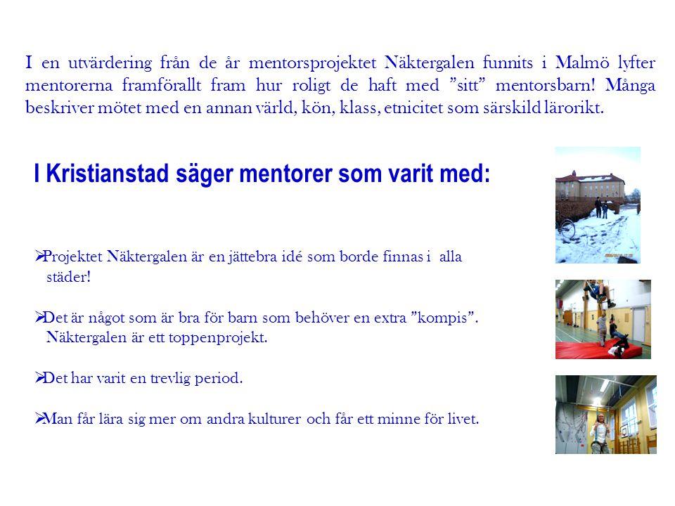 """I en utvärdering från de år mentorsprojektet Näktergalen funnits i Malmö lyfter mentorerna framförallt fram hur roligt de haft med """"sitt"""" mentorsbarn!"""