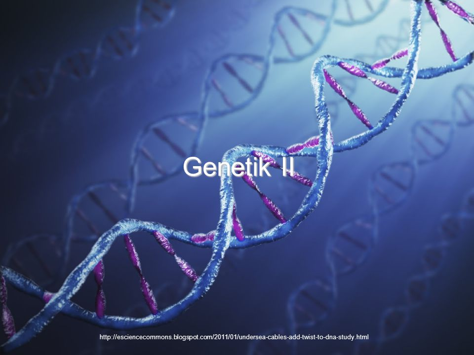 http://esciencecommons.blogspot.com/2011/01/undersea-cables-add-twist-to-dna-study.html Genetik II