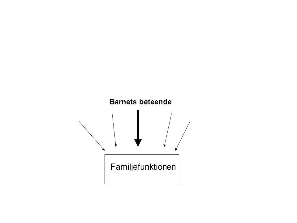 Barnets beteende Familjefunktionen