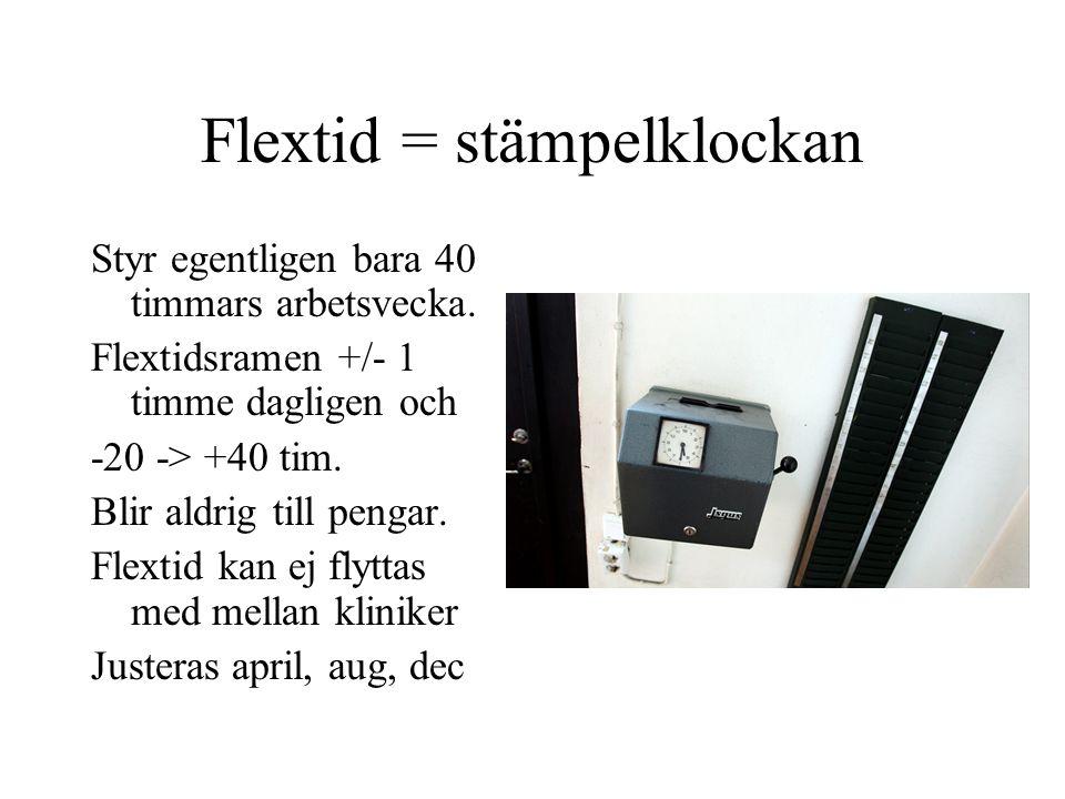 Flextid = stämpelklockan Styr egentligen bara 40 timmars arbetsvecka. Flextidsramen +/- 1 timme dagligen och -20 -> +40 tim. Blir aldrig till pengar.