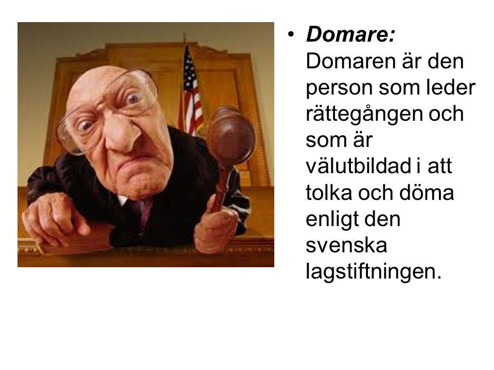 Domare: Domaren är den person som leder rättegången och som är välutbildad i att tolka och döma enligt den svenska lagstiftningen.