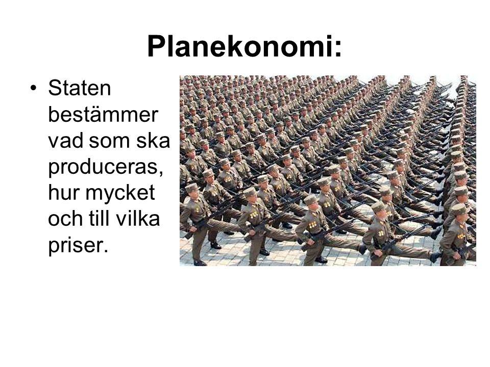 Planekonomi: Staten bestämmer vad som ska produceras, hur mycket och till vilka priser.