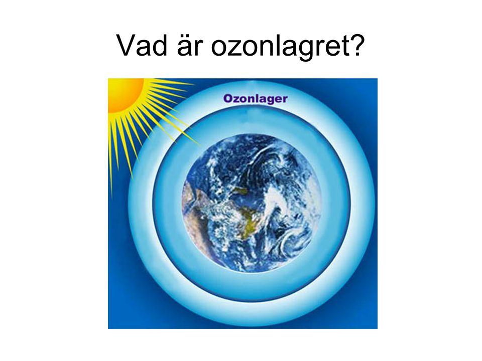 Vad är ozonlagret?