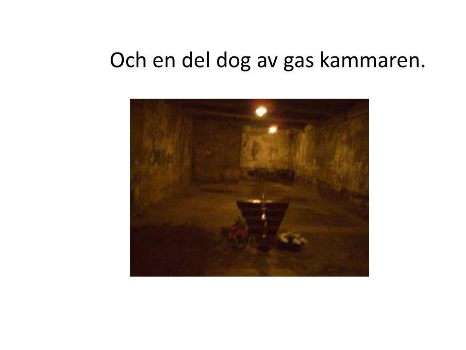 Och en del dog av gas kammaren.