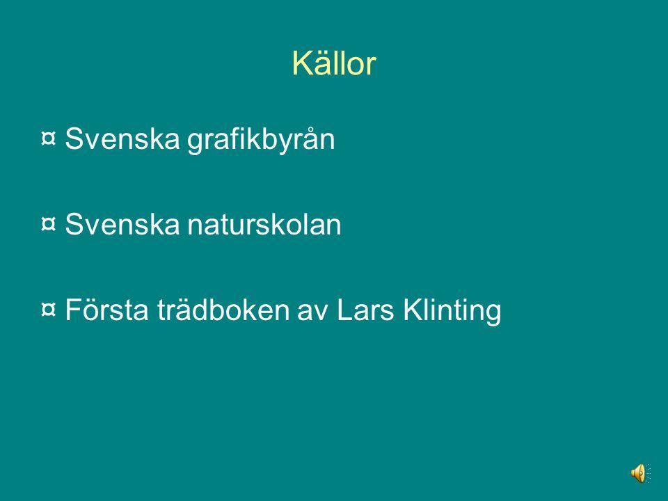 Källor ¤ Svenska grafikbyrån ¤ Svenska naturskolan ¤ Första trädboken av Lars Klinting