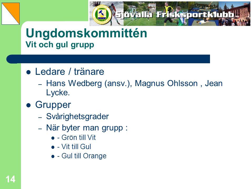 14 Ungdomskommittén Vit och gul grupp Ledare / tränare – Hans Wedberg (ansv.), Magnus Ohlsson, Jean Lycke. Grupper – Svårighetsgrader – När byter man