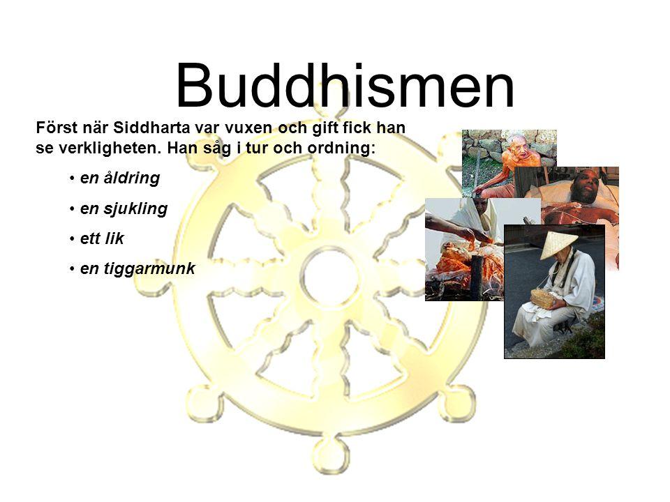 Buddhismen Först när Siddharta var vuxen och gift fick han se verkligheten. Han såg i tur och ordning: en åldring en sjukling ett lik en tiggarmunk
